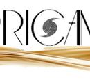 Hurricane Wiki/Logo