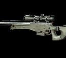 L118A