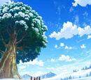 Sweet Dew Tree