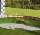 Frost Manor/Grounds/Quidditch Pitch