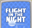 Flight in the Night