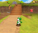 Super Mario 64 DS/Glitch