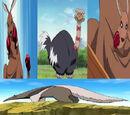 Cuatro Guerreros Ninja Animal