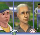 Sims com cabelo marrom