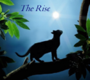 The Rise Series