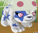 Precious Peachypanda