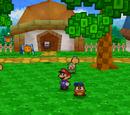 Koopa Village