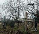 Cemitério Stull