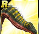 Rare Apatosaurus