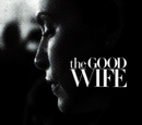 The Good Wife Seasons