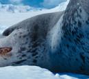 Leopard Seal (Happy Feet Two)
