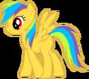 Aurora Dash