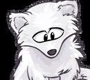 Tame Arctic Fox