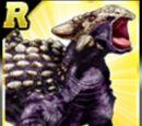 Rare Ankylosaurus