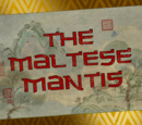 The Maltese Mantis