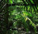 Jurassic Park Isla Nublar