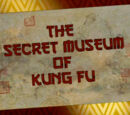 The Secret Museum of Kung Fu