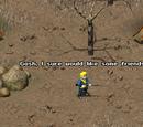Członkowie drużyny (Fallout Tactics)