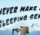 Never Wake a Sleeping Sensei