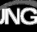 Bungie, Inc.
