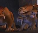 Zwierzęta stadne