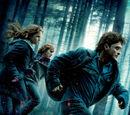 Harry Potter og Dødstalismanene del I