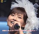 Abe Natsumi Concert Tour 2005 Aki ~24 Carat~