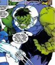 Bruce Banner (Earth-2841) from Wolverine Vol 2 148 0001.jpg