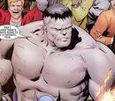 Fantastic Four members (Earth-808122)