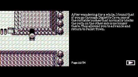 Pokemon Ghost Black retold