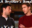 A Brothers' Bond (HERI)