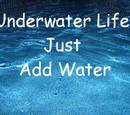 Underwater Life-Just Add Water