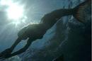 Rikki Swimming.png