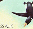 Flightless Auk