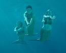 Bella rikki cleo swiming.jpg