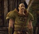 Ludzie z Geldern i kamień druidów