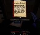 Rythian's Journal