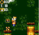 Bouncy Jungle Fox.png