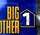 Big Brother 1 (Atelda1001)