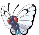 Butterfly Pokemon