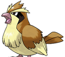 Bird Pokemon