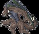 Dracopyres