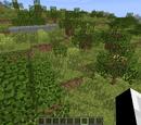 Peridot Biomes