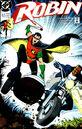 Robin v.1 3.jpg