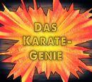Das Karate-Genie (Episode)