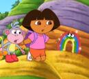The Shy Rainbow
