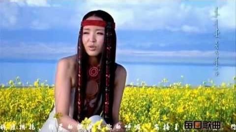 青海湖 Qinghai Lake - 黛青塔娜 HAYA 乐团