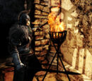 Dark Souls II: Miscellaneous Items