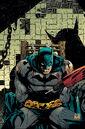 Batman 049.jpg