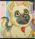 167px-The Friendship Collar on Magic.png